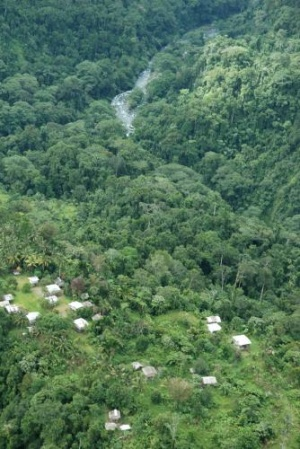 A jungle village on Bougainville, 2005. Photograph: Lloyd Jones/AAP